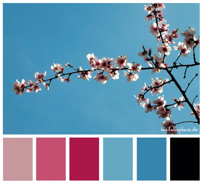 Color Pink For Inspiration Isas Place