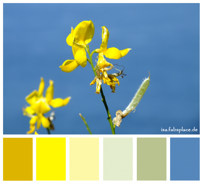 Yellow Gray Paint Color