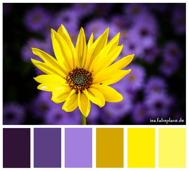 Color Palettes Purple